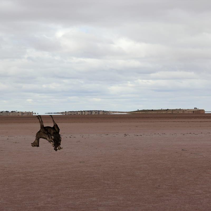 Archana Hande, The Golden Feral Trail Location: Laverton, Western Australia Wangai LandIndian Ocean Trade, 2013-14