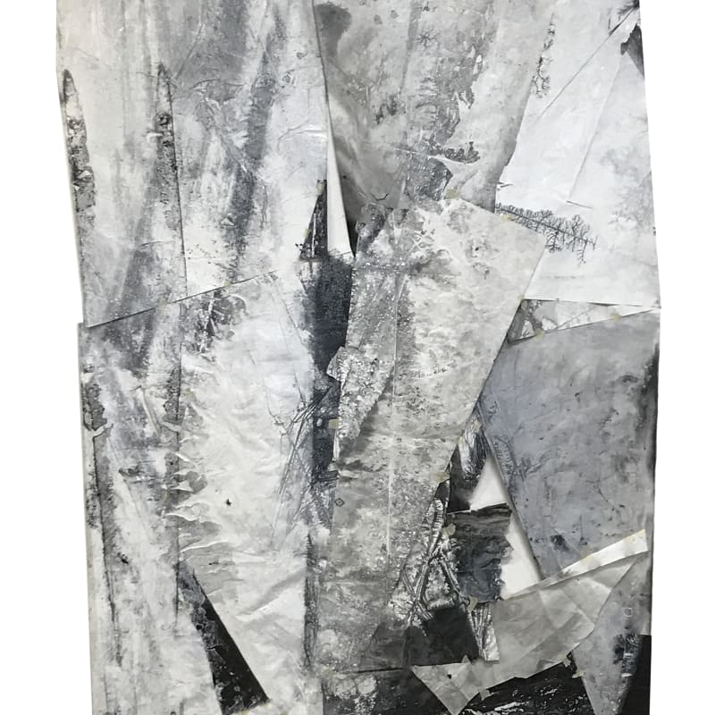 Zheng Chongbin 郑重宾, The Perimeter of Unknown Shape 无名状的区域, 2017