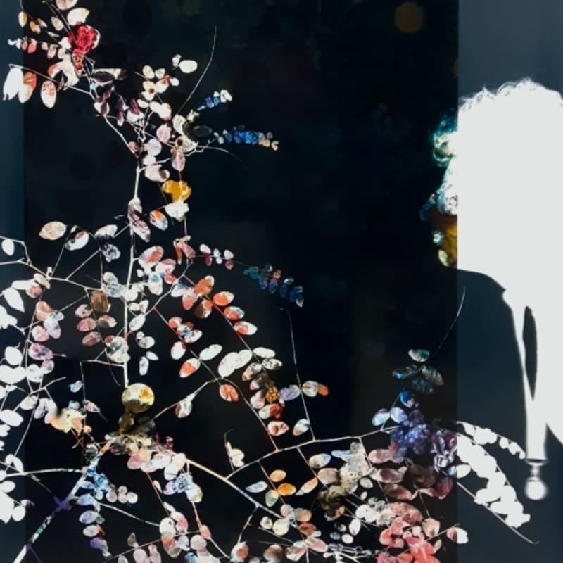 Baptiste Rabichon Ranelagh Epreuve chromogène unique Dim. papier: 127 x 90 cm