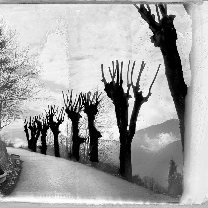 Jean-Christophe Béchet Belvédére, Alpes, France Tirage argentique classique, tiré sous agrandisseur sur papier baryté Ilford Warmtone, d'aprés Polaroid, film 665 Dim. papier: 80 x 120 cm