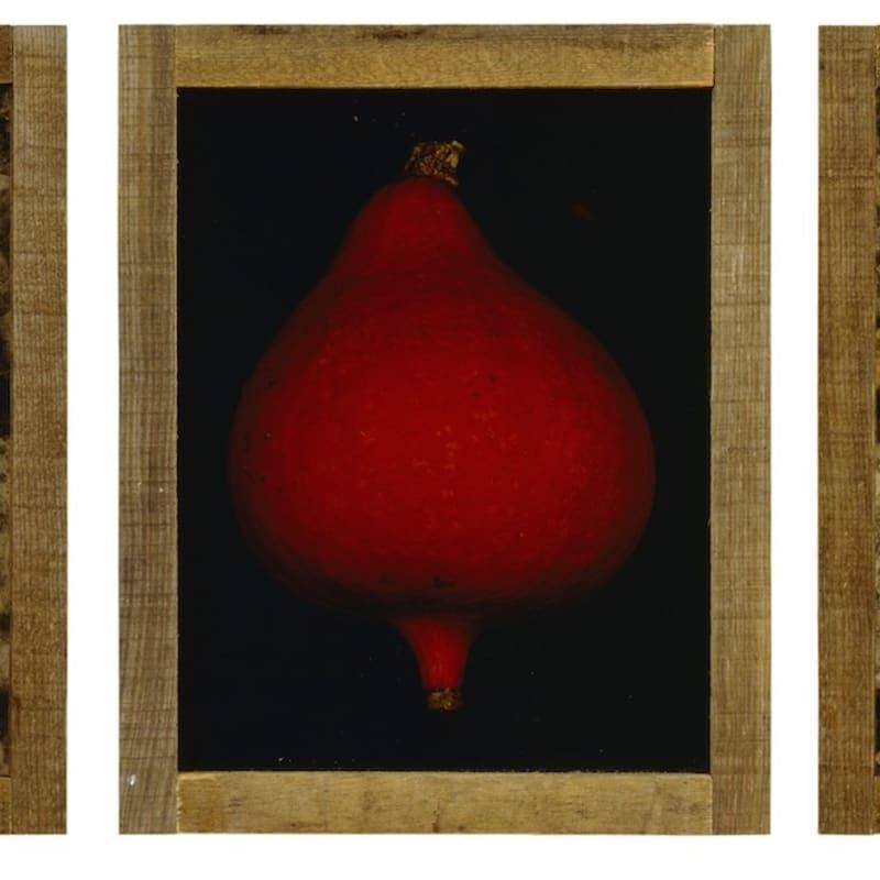 Pascal Kern Nature Triptyque, tirages Cibachrome, encadrement bois