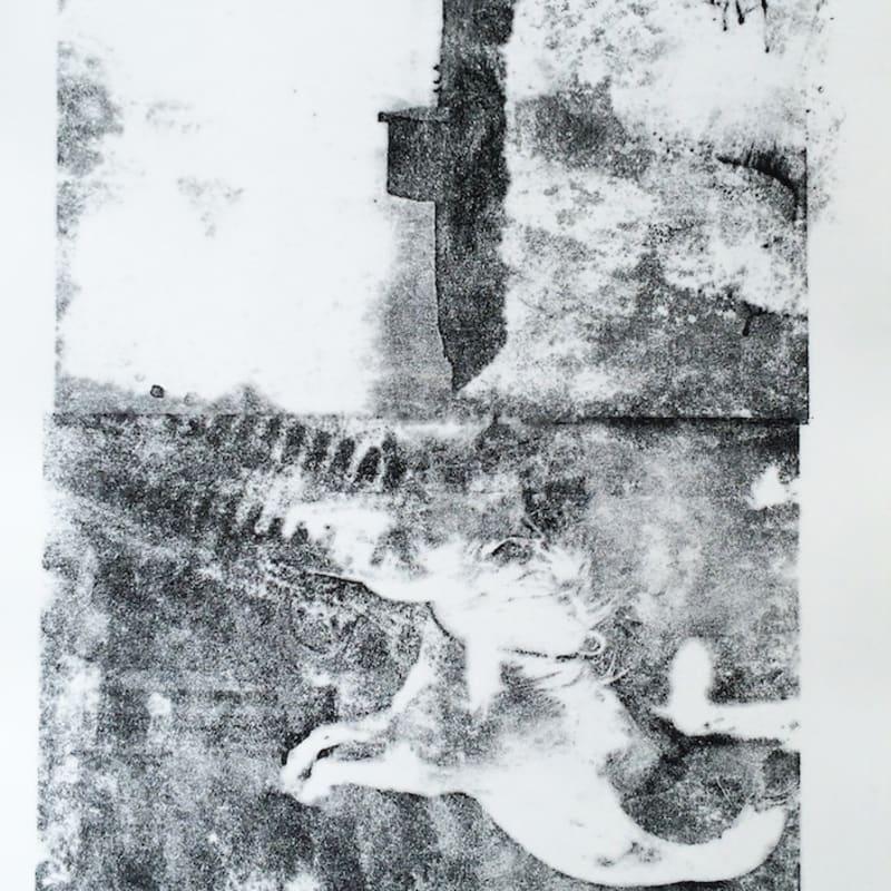 Édouard Prulhière Desafinado I Lithographie par décalque de photographies 45 x 32 cm