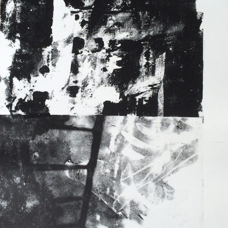Édouard Prulhière Desafinado III Lithographie par décalque de photographies 45 x 32 cm
