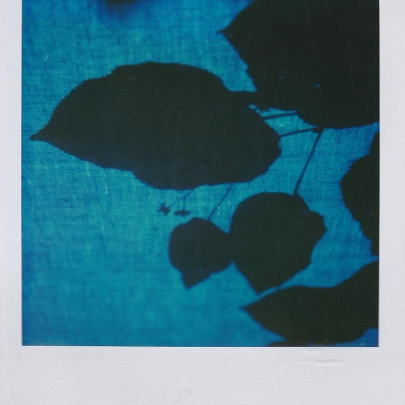 Marion Dubier-Clark Blue shadow Polaroid 7,7 x 7,9 cm 2.76 x 2.76 in Dim. papier: 10,7 x 8,8 cm