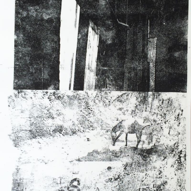 Édouard Prulhière Desafinado II Lithographie par décalque de photographies 45 x 32 cm