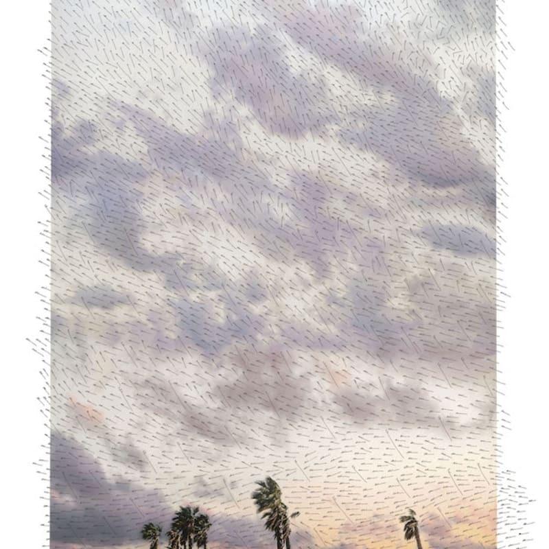 Jacqueline Salmon Palmiers, Toulon Tirage à encres pigmentaires sur papier Velvet d'Epson réalisé par l'artiste, certifié digigraphie Dim. papier: 50 x 70 cm