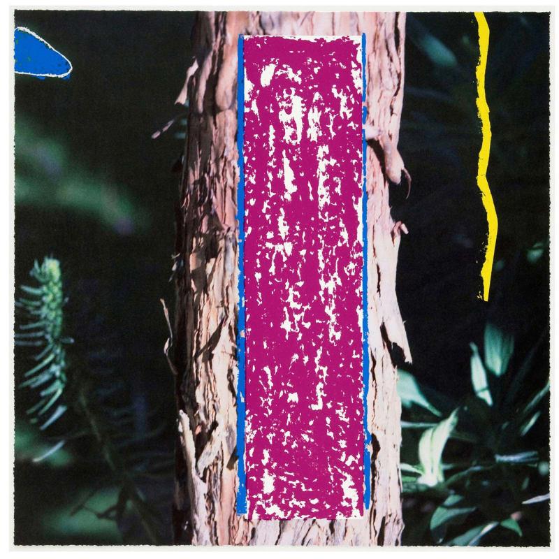 John Baldessari 2326 Third Street, Santa Monica Lithographie couleur avec impression sérigraphique 69,6 x 69,6 cm Dim. papier: 69,6 x 69,6 cm