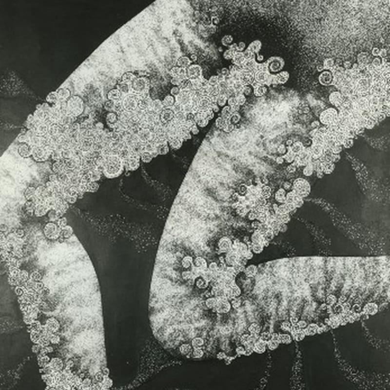 Robert Malaval Genou gauche - Pubis. L'Aliment blanc dessin à l'encre en chine 60 x 50 cm 13 3/4 by 17 3/4 in.