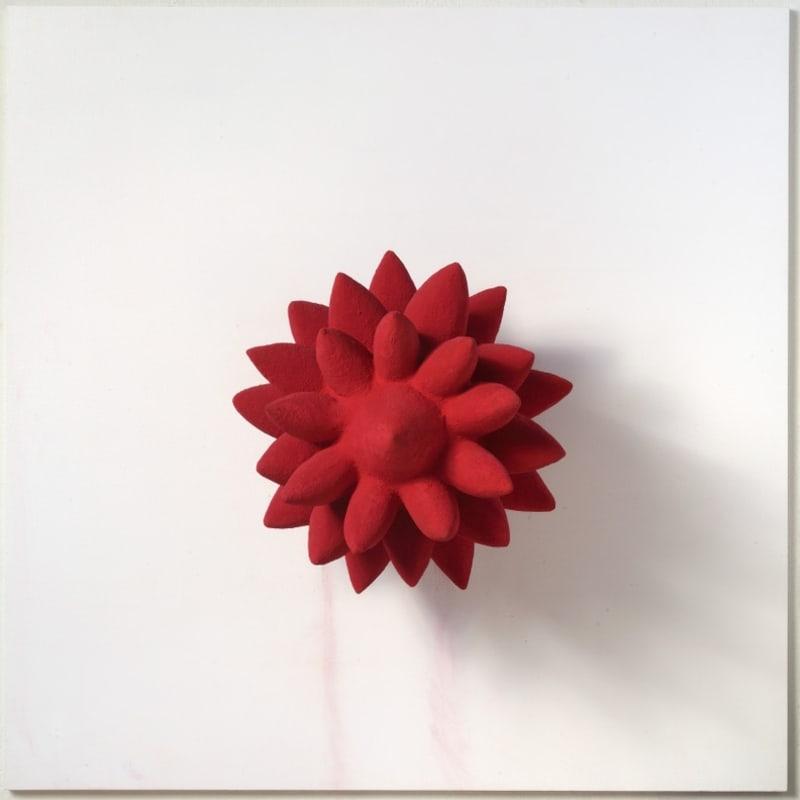 Anish Kapoor 1000 Names bois, polystyrène et pigment 47 x 41 x 41 cm