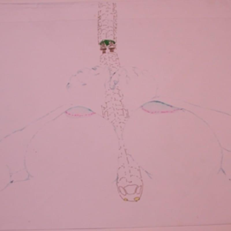 Sébastien Pignon Série des dessins-enveloppes crayon, feutre, aquarelle et encre sur papier 29,5 x 44,5 cm 13 7/8 by 13 in.