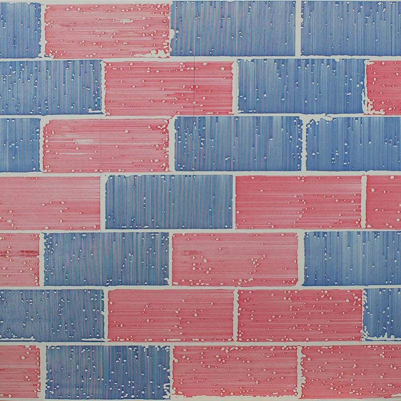Elizabeth Dove, untitled