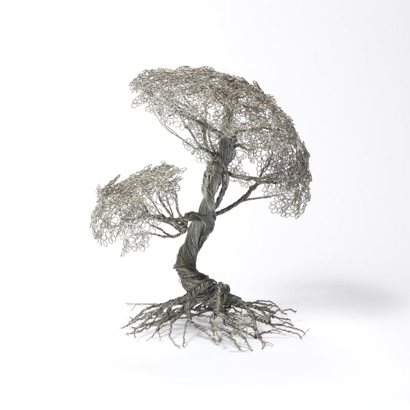 Soufien  Olivier, 2019  Metal Wire  17 x 19 x 20 cm