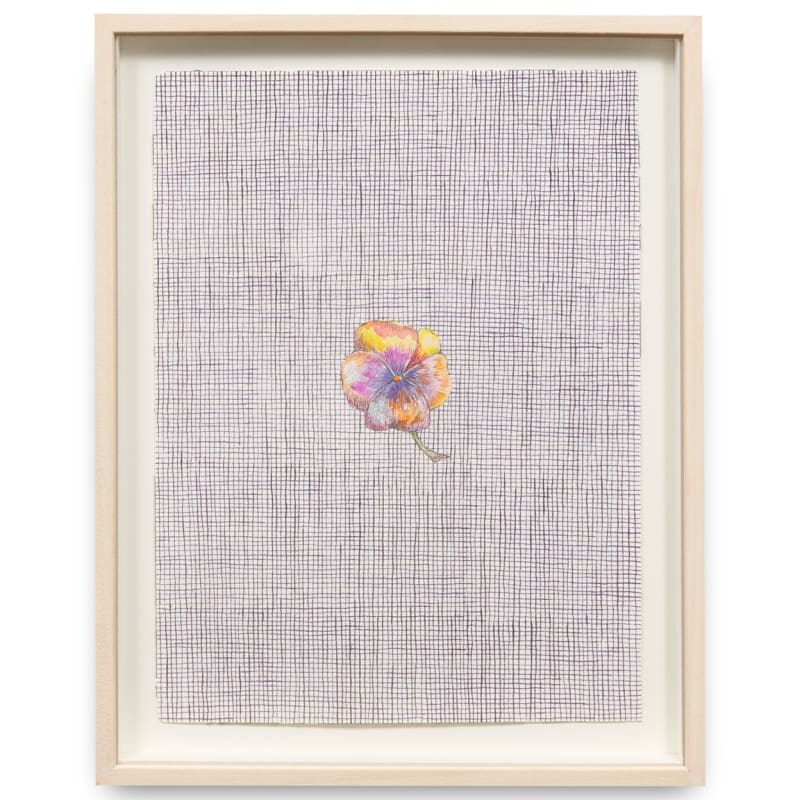 Paolo Colombo  Untitled (Flower), 2019  Watercolour on paper  36.5 x 29.7 cm
