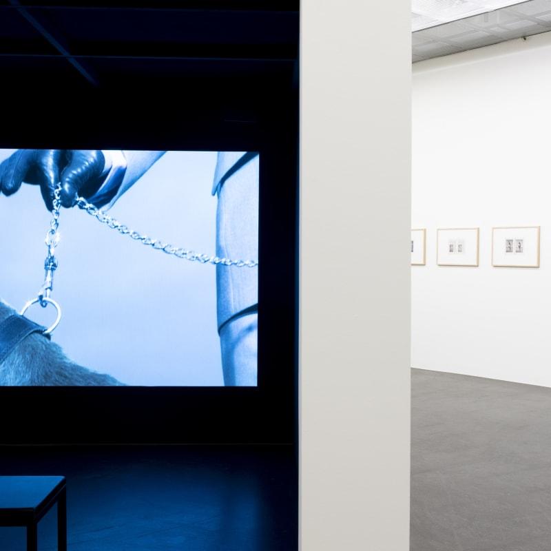 """Annika Larsson, Installation view """"Dog"""", Lentos Art Museum Linz, Austria. Photo: maschekS. 2021"""