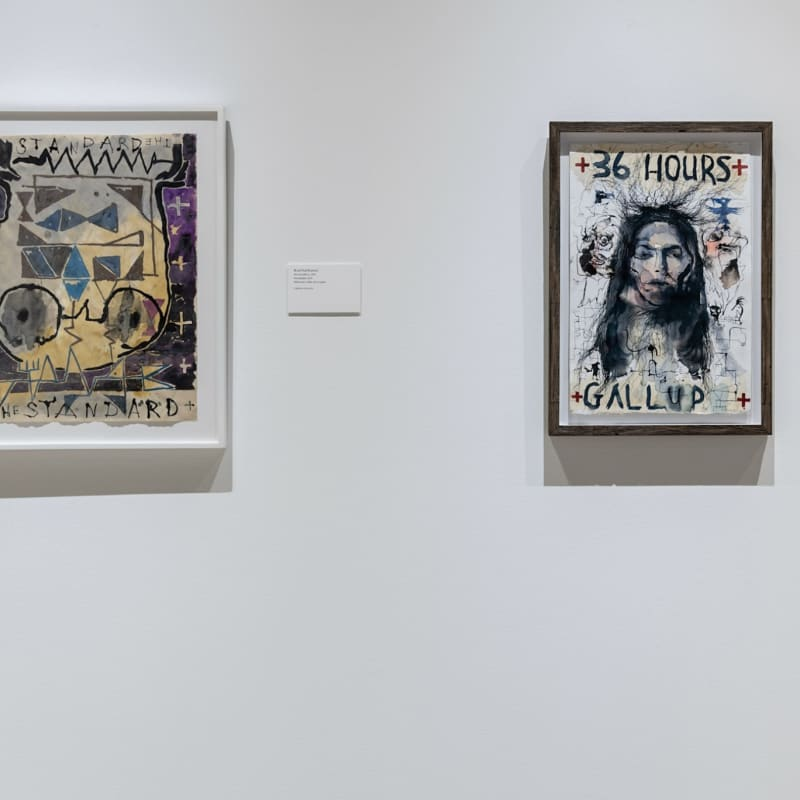 "Brad Kahlhamer - Installation view ""Larger Than Memory: Contemporary Art From Indigenous North America"" at Heard Museum, Phoenix, Arizona, USA,..."