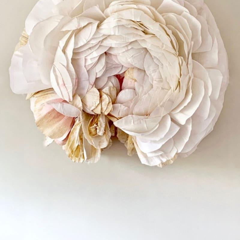Rose Specimen F (Ranunculus) by Tiffanie Turner.