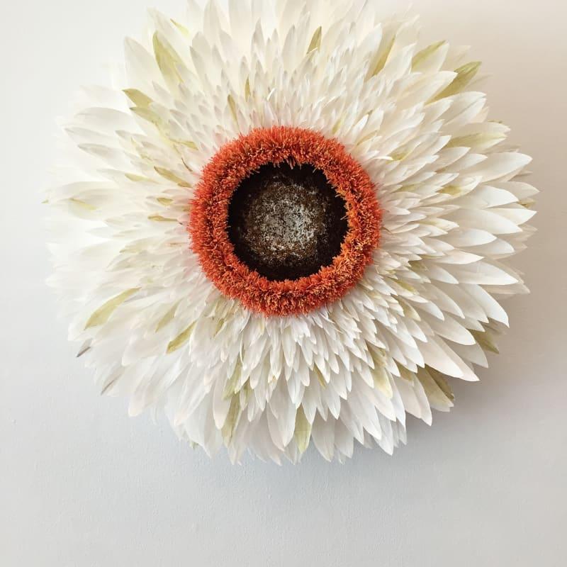 Specimen A (Strawflower) by Tiffanie Turner.
