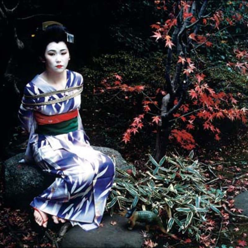 Nobuyoshi Araki Untitled (Bodyscape), 1997