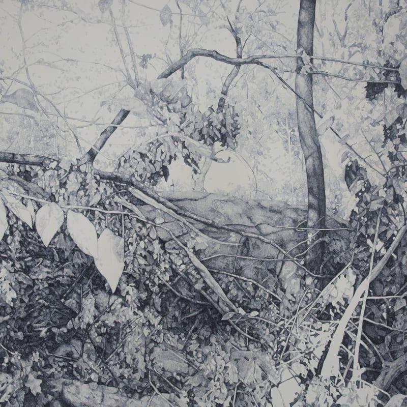Zhao Xuebing, Central Park No.9, 2012