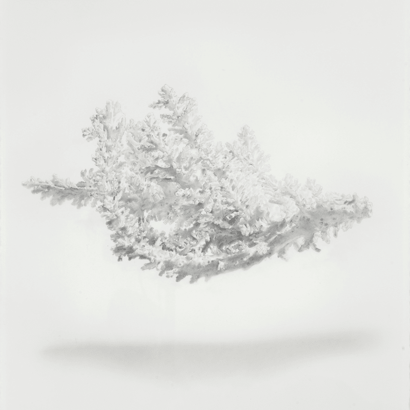 Lu Chao, Suspension No.3, 2015