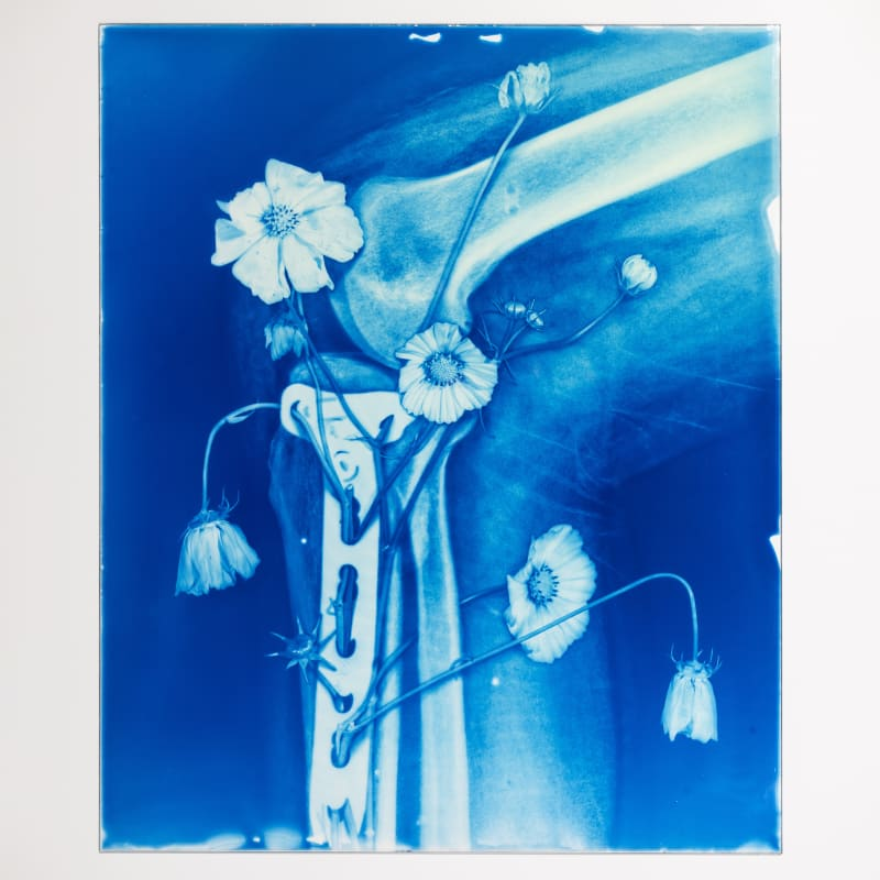 Hu Weiyi Blood Blue No.12 2020