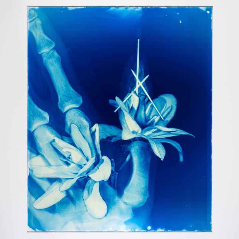 Hu Weiyi Blood Blue No.17 2020