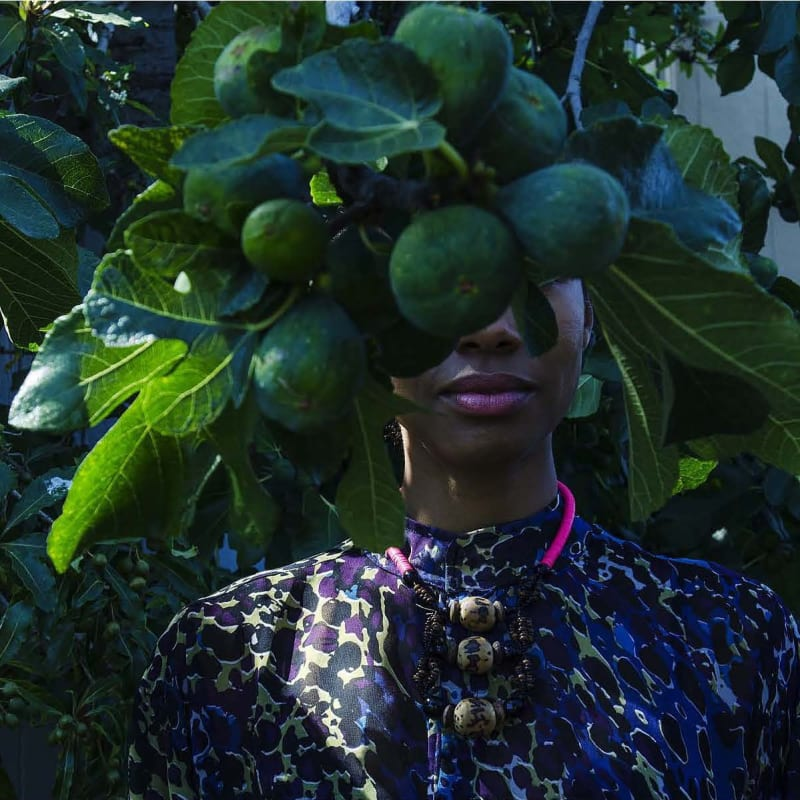 Zohra Opoku, Ficus Carica, 2015. Courtesy of the Artist and Mariane Ibrahim Gallery