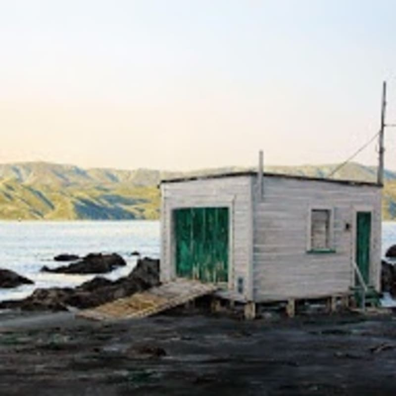 172 (Boatshed at Karaka Bay and light on the hills) Oil on board 470 x 780mm