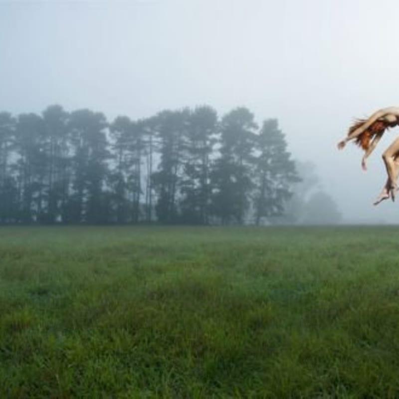 Toby Burrows, Fallen Mist, 2010