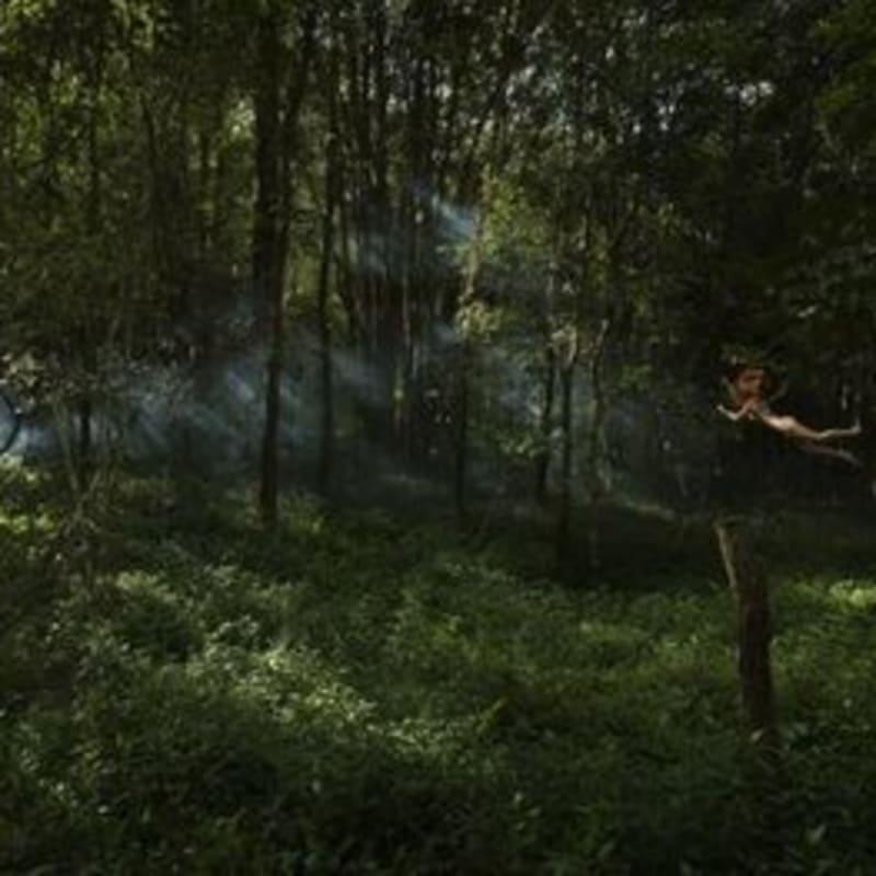 Toby Burrows, Watching (Medium), 2010