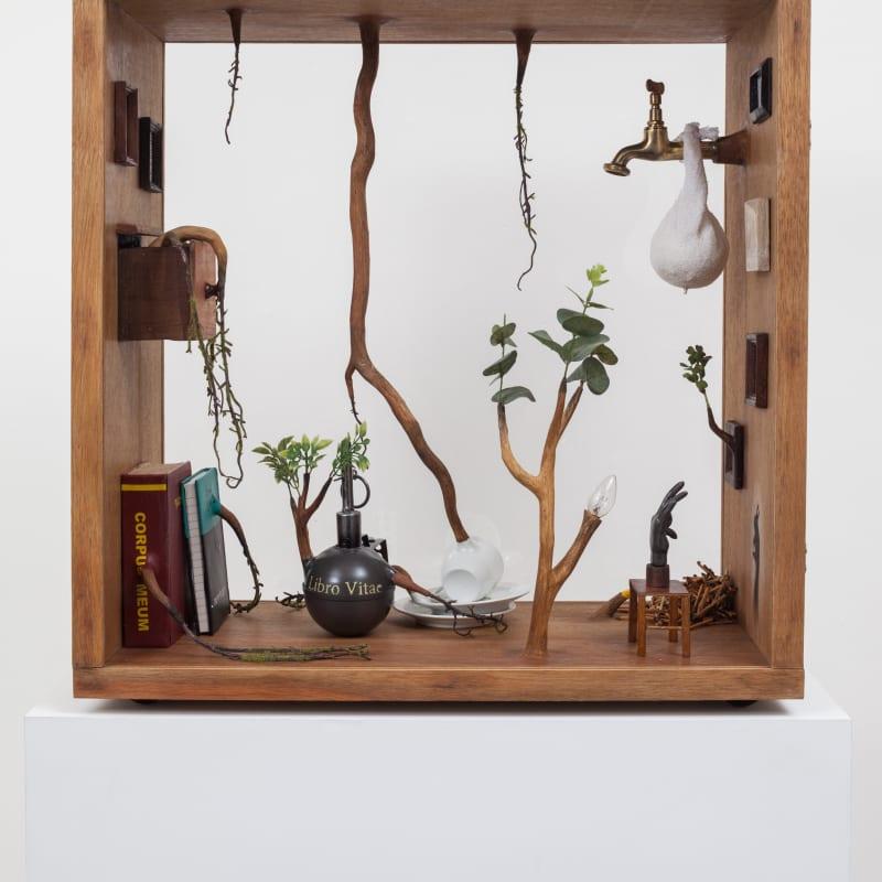 Camille Kachani, Sem título, 2017