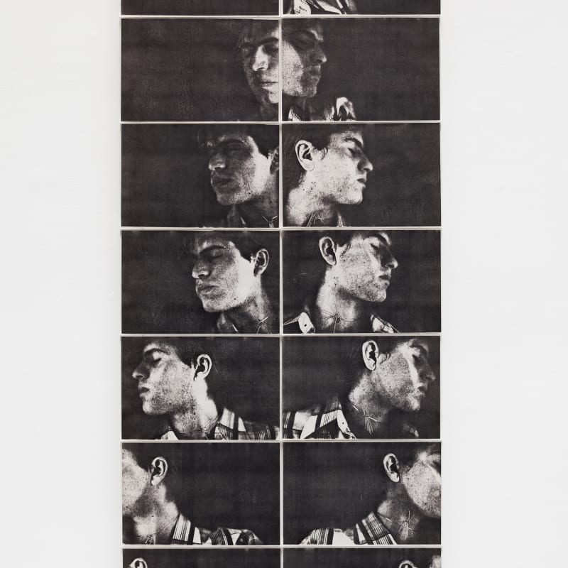Mario Ramiro, Espelho invertido, 1979