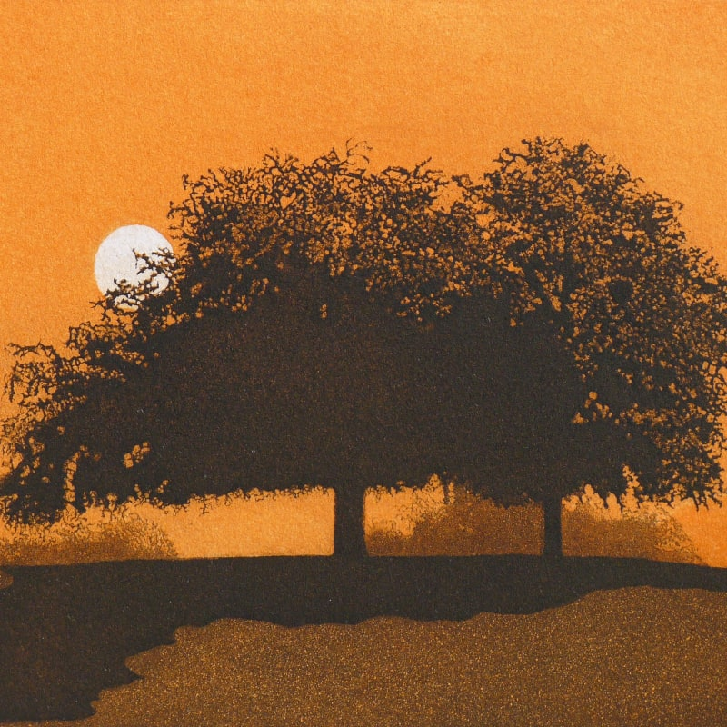 Phil Greenwood RE, Heath Trees