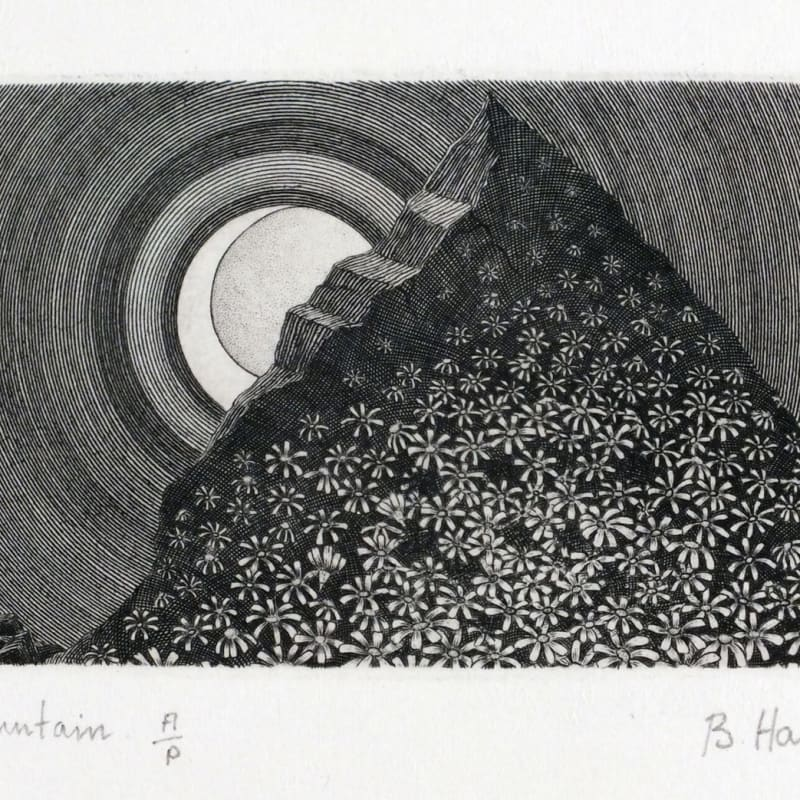 Brian Hanscomb RE, Flower Mountain