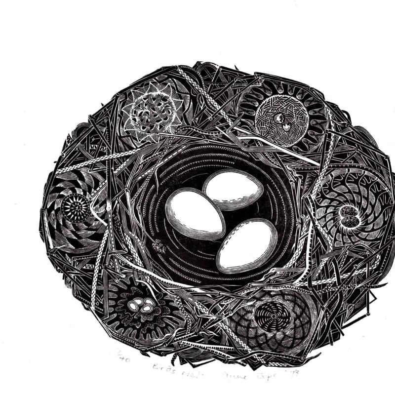 Anne Jope RE, Bird's Nest