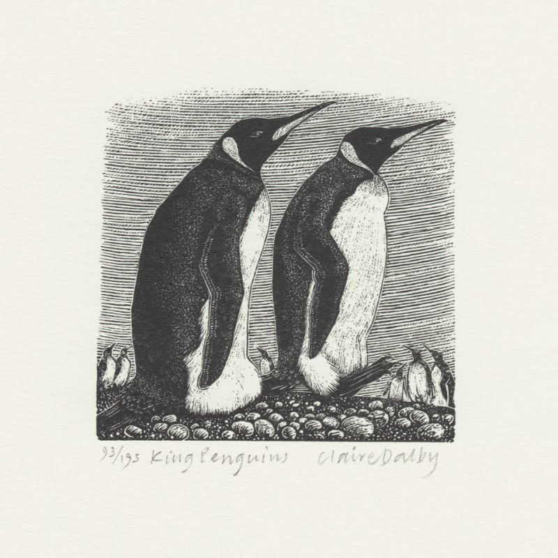 Claire Dalby RWS RE, King Penguins