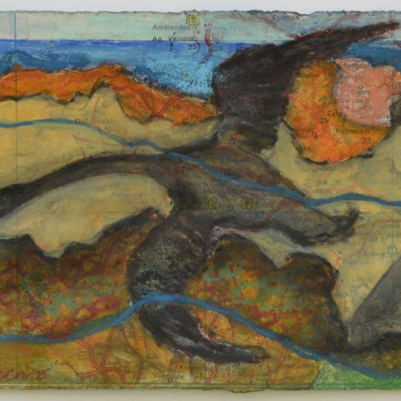 Sula Rubens ARWS, Shore Flight Study