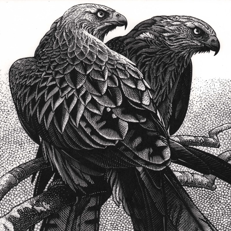 SOCIETY OF WOOD ENGRAVERS 80th Annual Exhibition