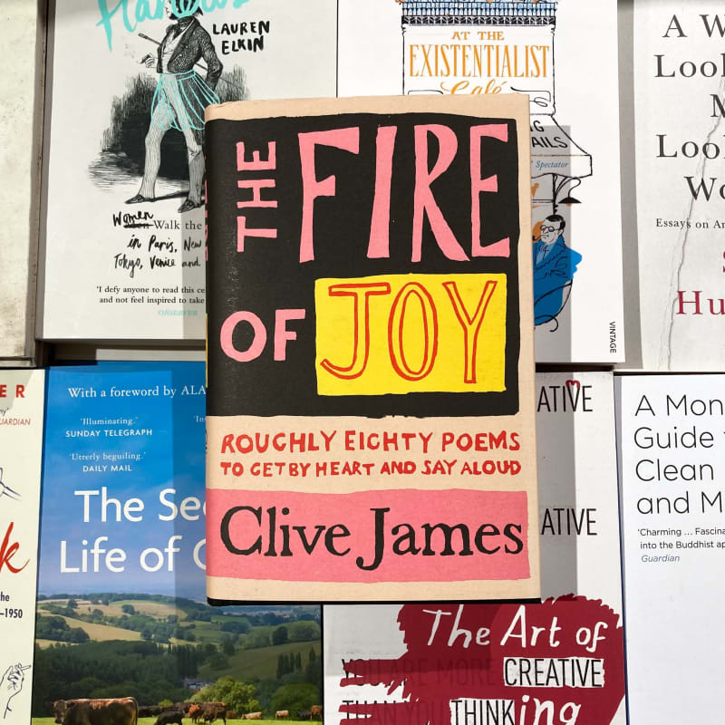 Bookshop in Focus