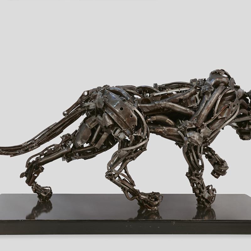 Roberto Vaccaro - Panthera Pardus