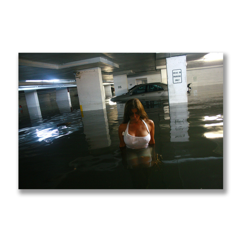 The Deluge, After the Hurricane, 2009