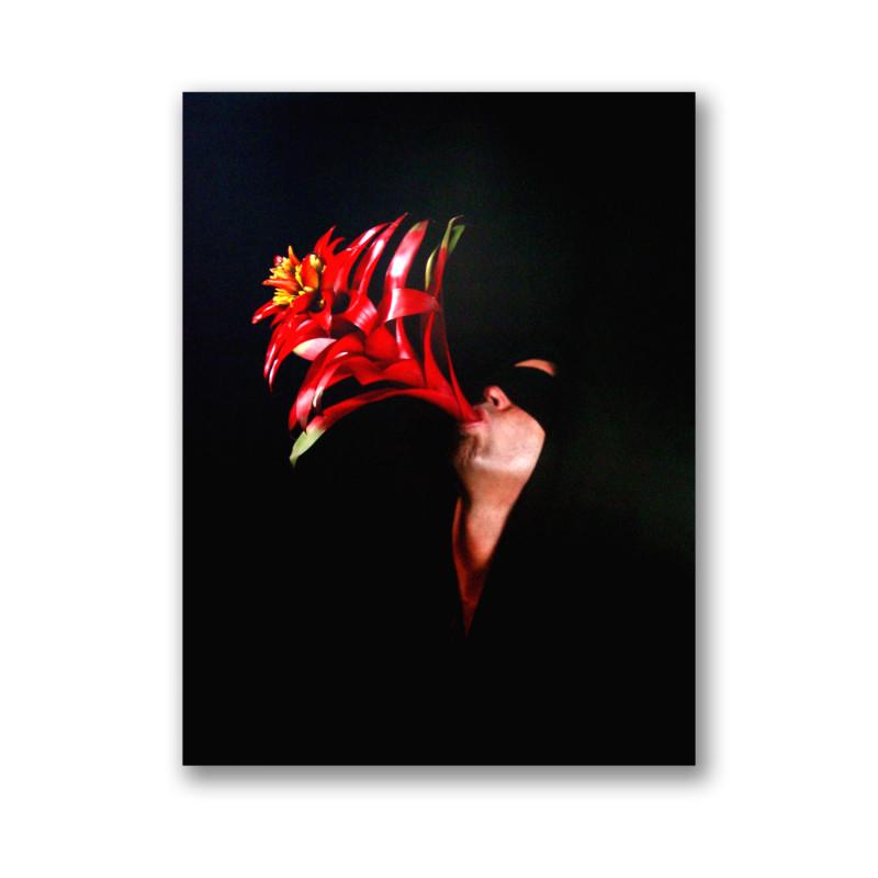 Back Stories at Hobe Sound (Jupiter Island) in large format Polaroids, 2004
