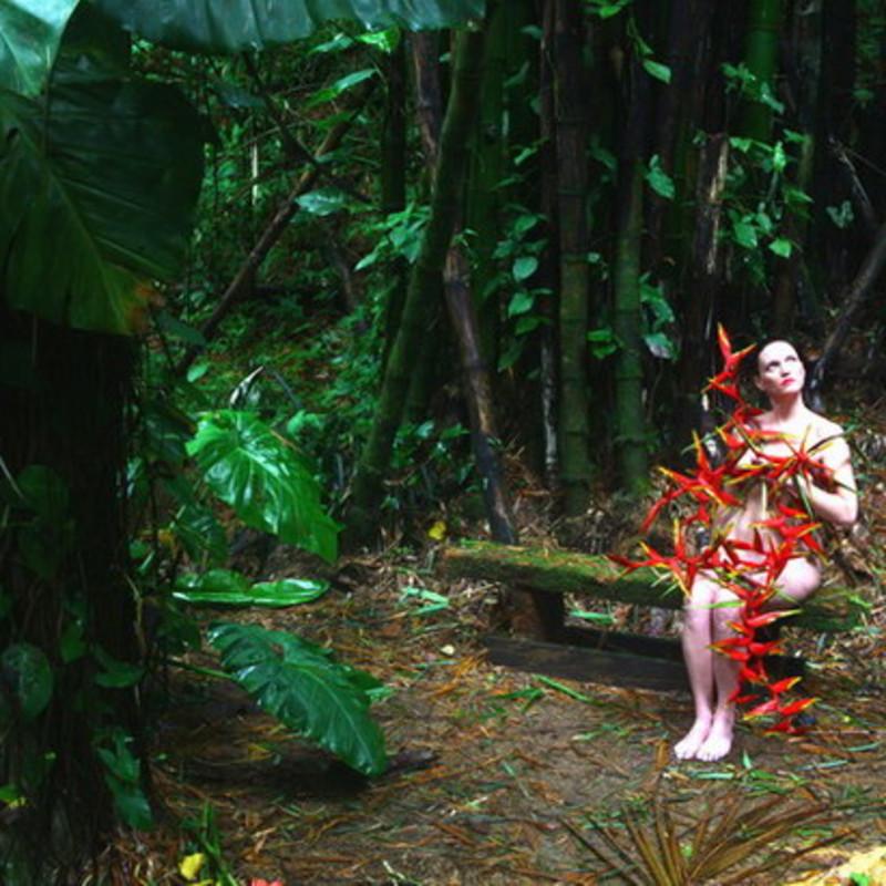 Enchanted Garden: El Yunque Casa Flamboyant, The