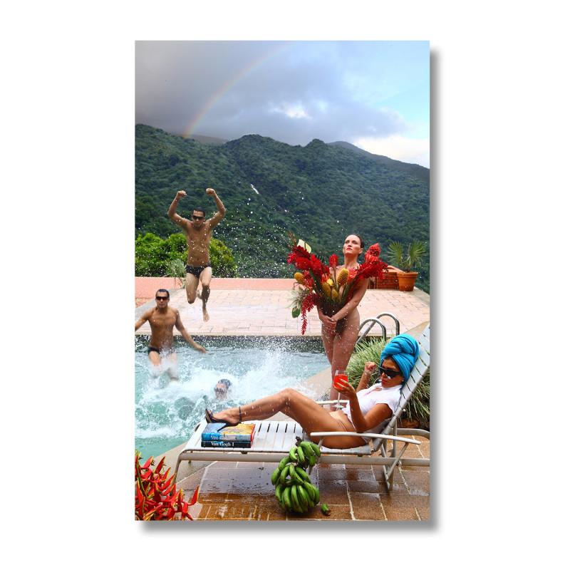 The Enchanted Garden: El Yunque, (Puerto Rico) Casa Flamboyant, 2010