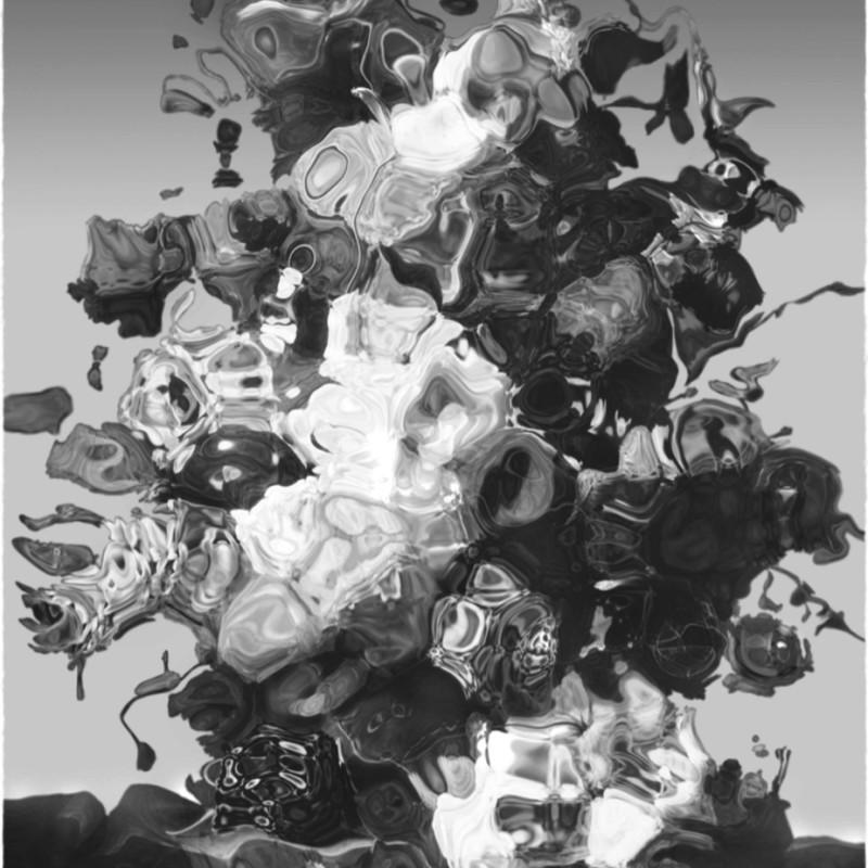 Christoph Steinmeyer, Fleurs du Dystophie, 2013