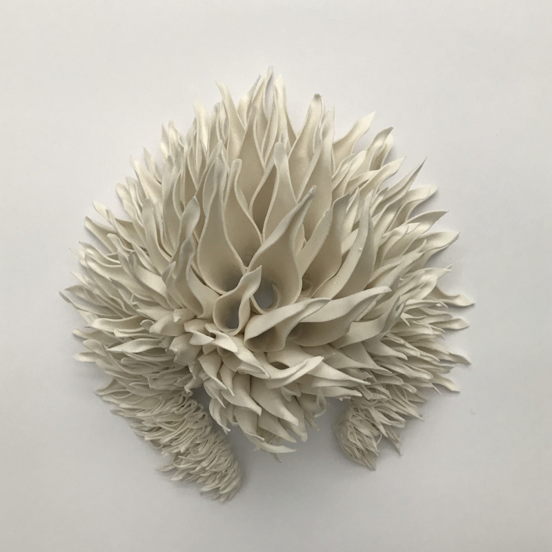 Nuala O'Donovan, Teasel, Wall Piece – Sequence 1, 2019