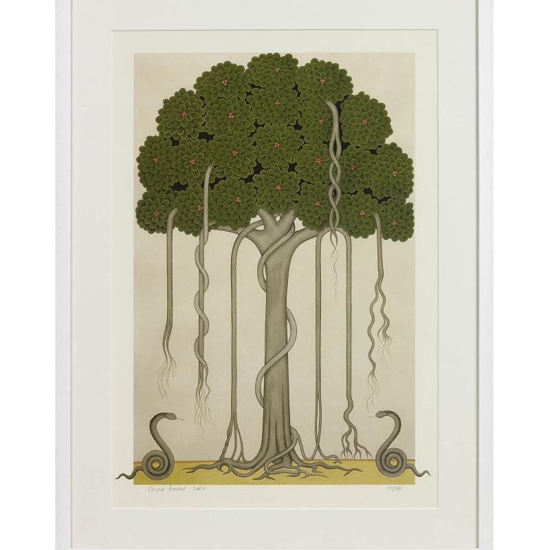 <span class=&#34;artist&#34;><strong>Olivia Fraser</strong></span>, <span class=&#34;title&#34;><em>Banyan Tree</em>, 2010</span>