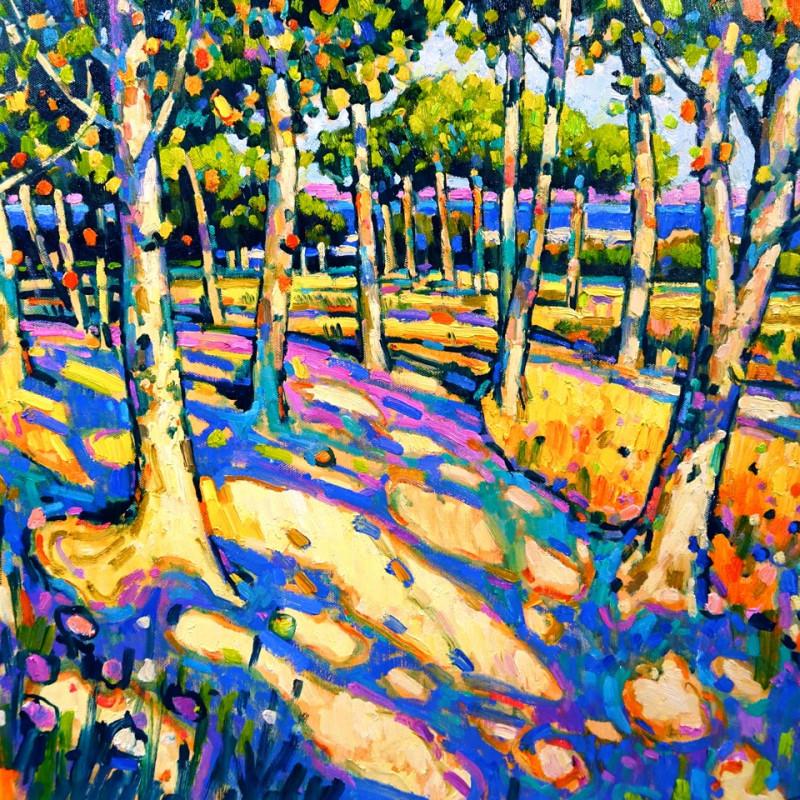 Terence Clarke - The lake near Mallemort