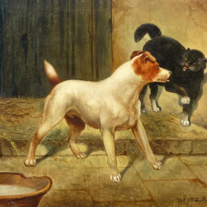 William Fitz - Terrier & Cat