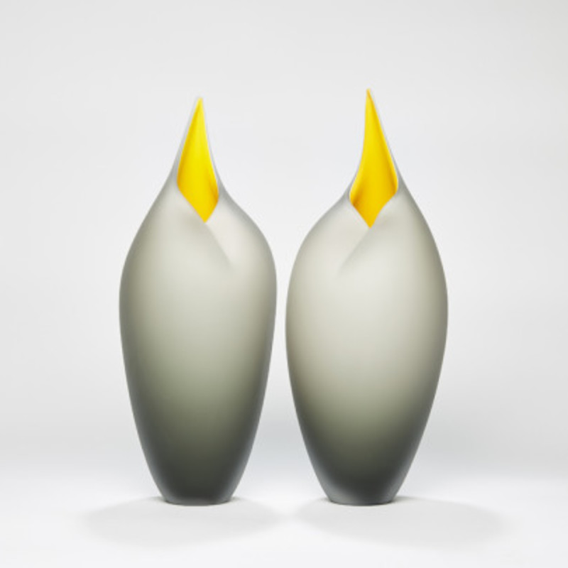 Bruce Marks - Grey and yellow birds